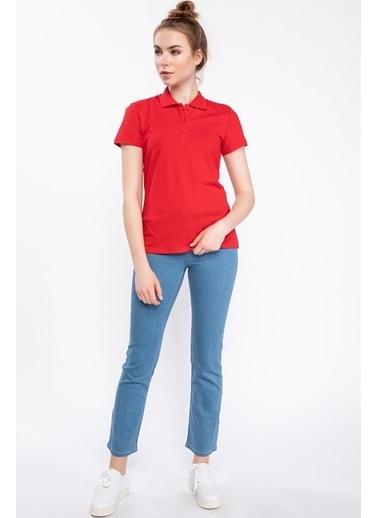DeFacto Basic Polo T-shirt Kırmızı